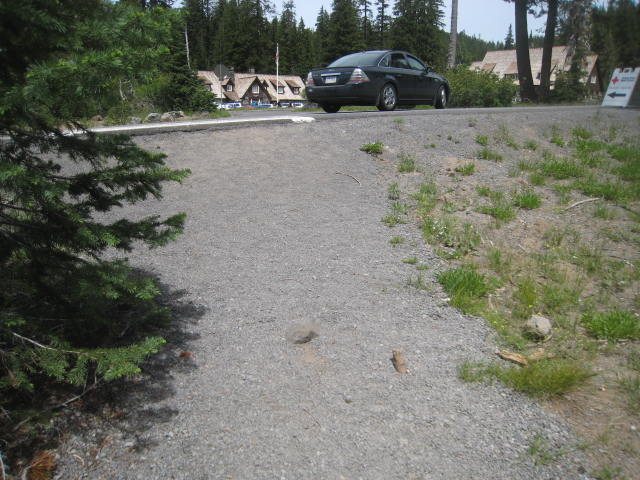 Approach to Road from Castle Crest Trail Jennifer Gifford NPS Trails Supervisor 2015