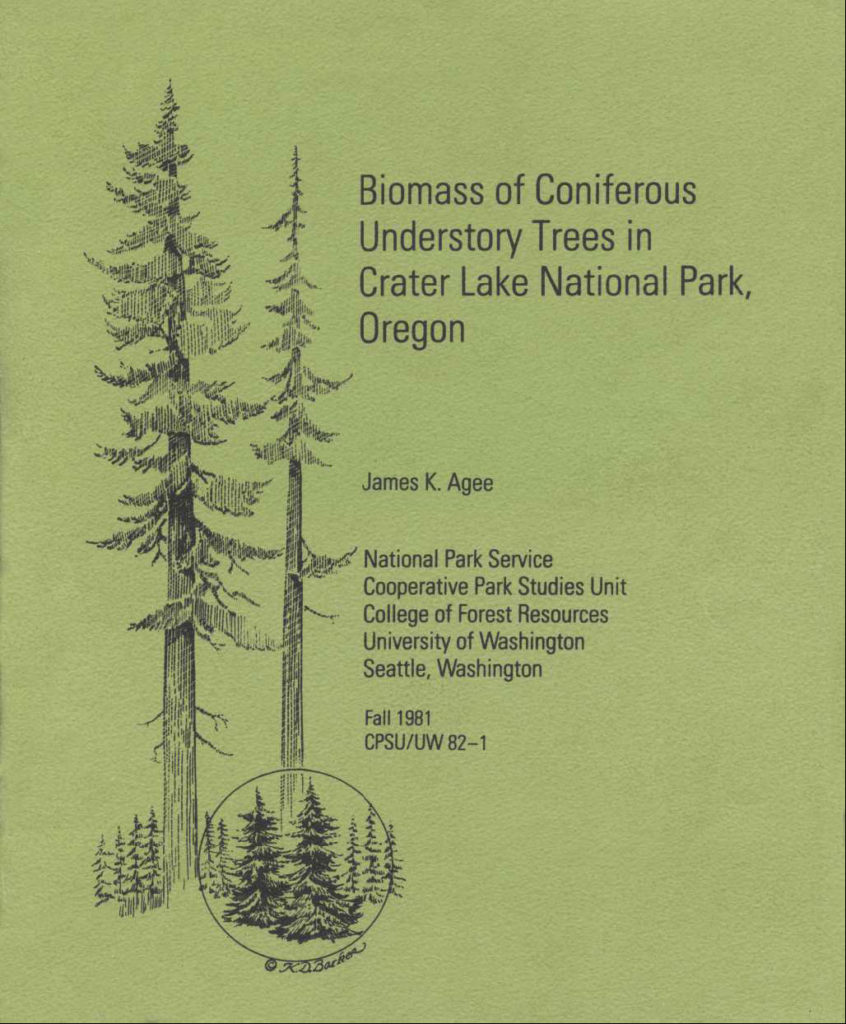 biomass-of-coniferous-trees-1981