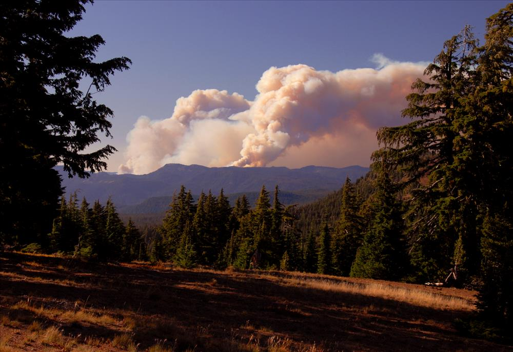 Boze Fire in Crater Lake NP, 2009 Dave Harrison