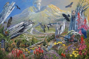 Nature Returns to Mount St Helens by Larry Eifert