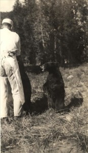 Feeding the Bears in Crater Lake NP (date unknown) 2