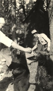 Feeding the Bears in Crater Lake NP (date unknown) 3