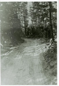 Fire road (also called motorway or truck trail) in Crater Lake NP, circa 1934