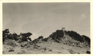 Mt. Scott lookout in Crater Lake NP, circa 1930