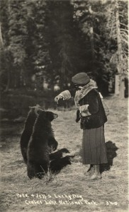Pete and Jett's Lucky Day, Feeding a Bear in Crater Lake NP (date unknown)