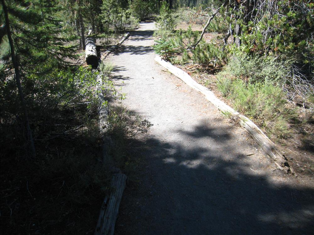 Pinnacles Trail Edging Replacement - Vegetation Overgrowth Jennifer Gifford 2015