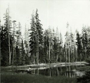 Quillwort Pond in Crater Lake NP, 1951 Laldrence Sept 10, 1951