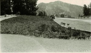 Rim Village area sodding after one season in Crater Lake NP, 1933 2