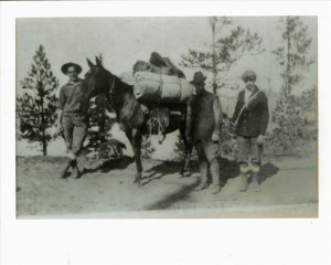 Road location Moving Camp in Crater Lake NP, 1918 G.V. Robinson