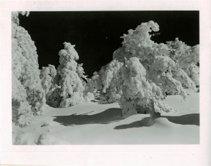 Snow Scene in Crater Lake NP (date unknown)