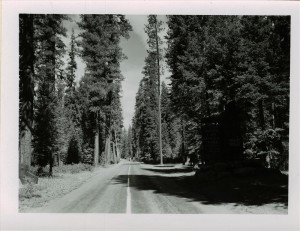 South Entrance Sign and Entrance Fees in Crater Lake NP, 1953