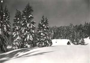 Superintendent's Residence House 19 in Crater Lake NP (date unknown)