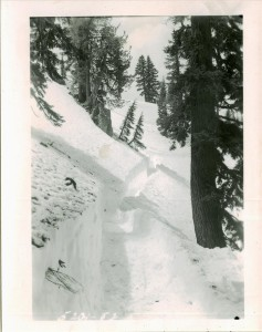 Trail to Lake on South Side from Rim Village in Crater Lake NP, July 1951