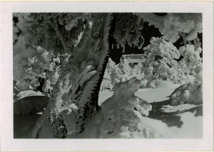 Winter scene of Watchman Lookout in Crater Lake NP (date unknown)