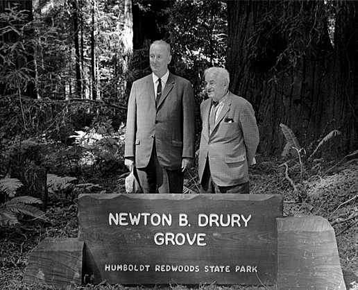 david-canfield-newton-drury