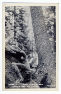Title: Lady of the Woods, Crater Lake Nat'l Park Postmark: Port. & ? (difficult to read) Stamp: 1 cent Card Number(s): C13159 Photographer: Sawyer Scenic Photos, Inc., Portland, Ore. Publisher: Sawyer Scenic Photos, Inc., Portland, Ore.